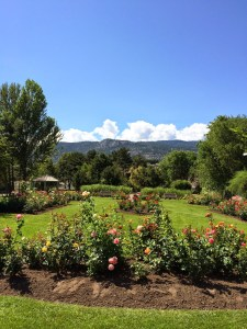 Penticton Rose Garden Beside the SS Sicamous Okanagan Lake Wedding Ceremony Reception