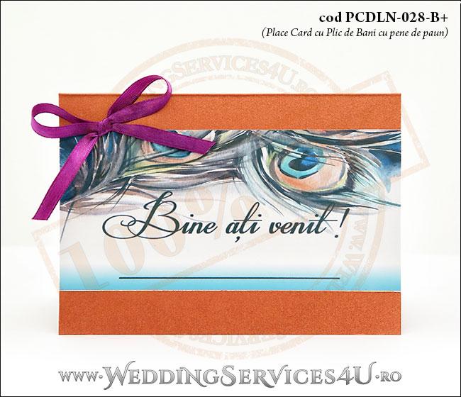 PCDLN-028-B+plic_de_bani_exotic_place_card_cu_pene_de_paun_nunta_botez