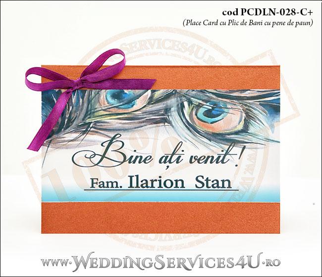 PCDLN-028-C+-01_place_card_plic_de_bani_deluxe_nunta_exotica_botez_cu_pene_de_paun