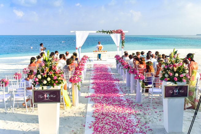wedding ceremony aisle with aisle runner and flower