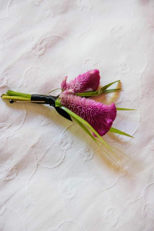 groom boutonniere pink