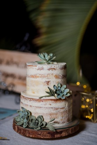 semi-naked-wedding-cake-sugar-succulents