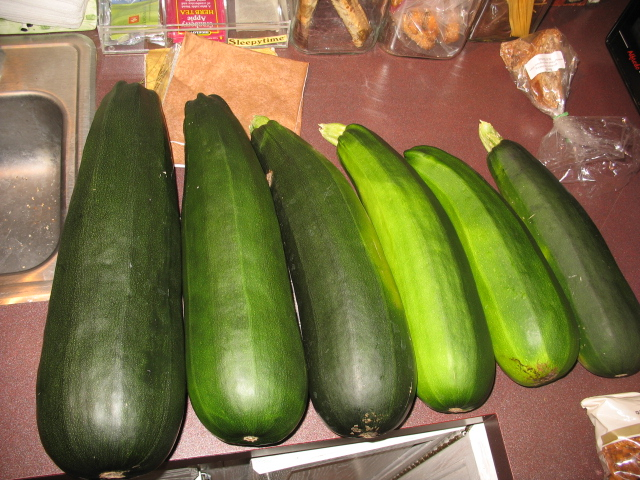 First harvest from 2007 garden.