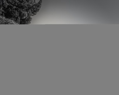 MFP_8179-Edit-Edit
