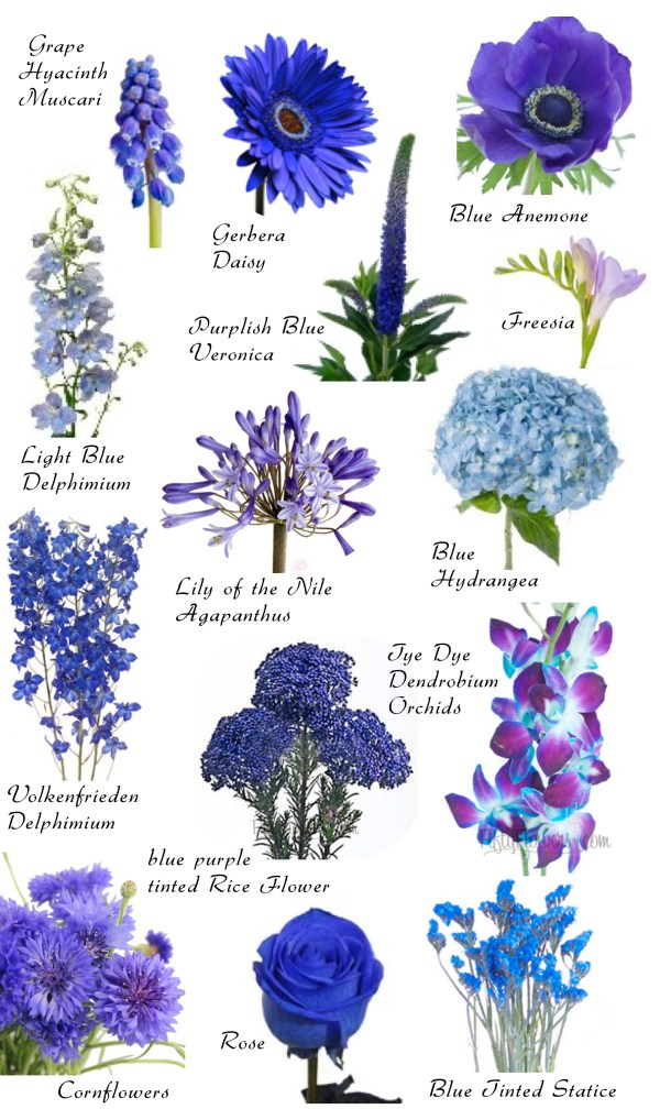 Flower names by Color Hayleys Wedding Tips 101