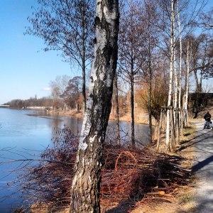 Hohenzollernkanal