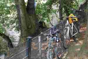 Räder in der Uferböschung, Zaun ist kein Hindernis - Foto: Andrei Schnell