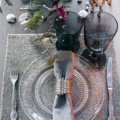Блеск серебра: стилизованная съемка