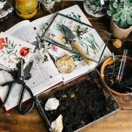 Любовь и ботаника: стилизованная фотосессия