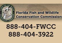 FWC Image with contact information