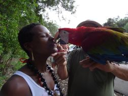 ...that time I was kissed by a parrot.