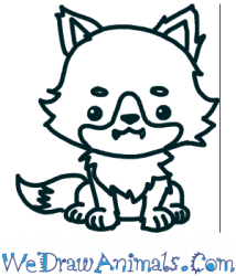 How to Draw a Cute Wolf