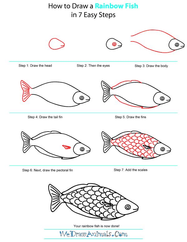 How To Draw A Rainbow Fish : rainbow, Rainbow