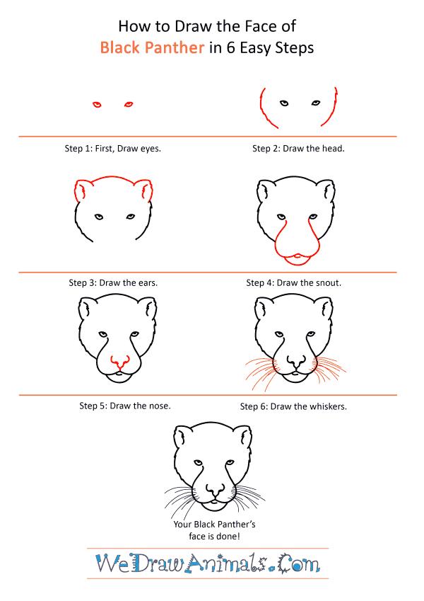 Panther Face Drawing : panther, drawing, Black, Panther