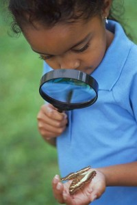(c) Child Evangelism Fellowship