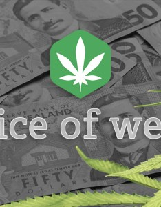 How much does weed cost in nz also prices are you getting ripped off rh