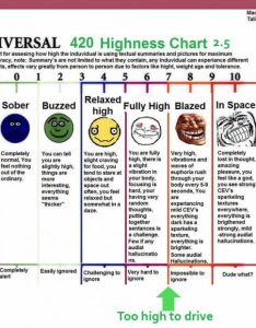 Weed tolerance chart how high stoner pothead scale memes also erkalnathandedecker rh