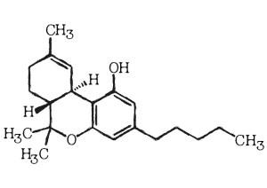 Tetra Hydro Cannabinol in de Scheikunde