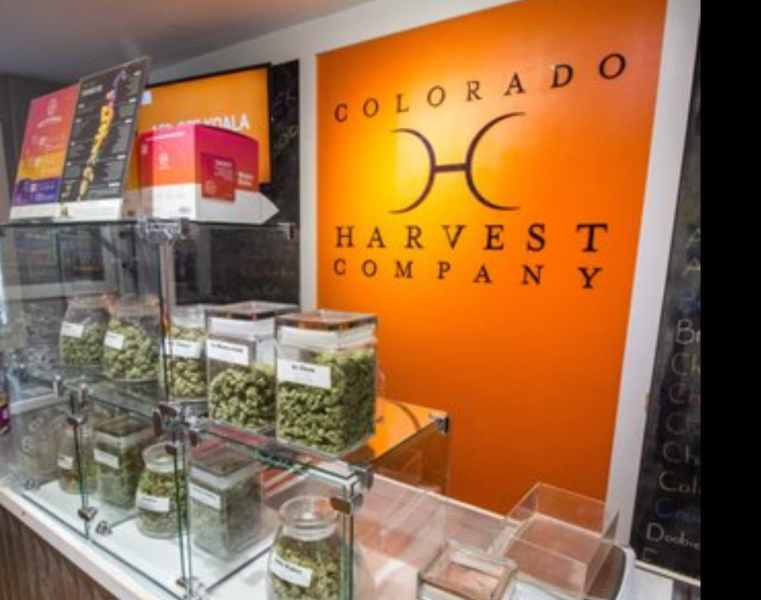 Colorado Harvest Company | Yale