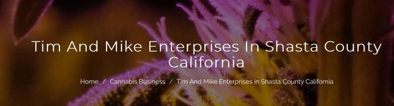 Tim and Mike Enterprises
