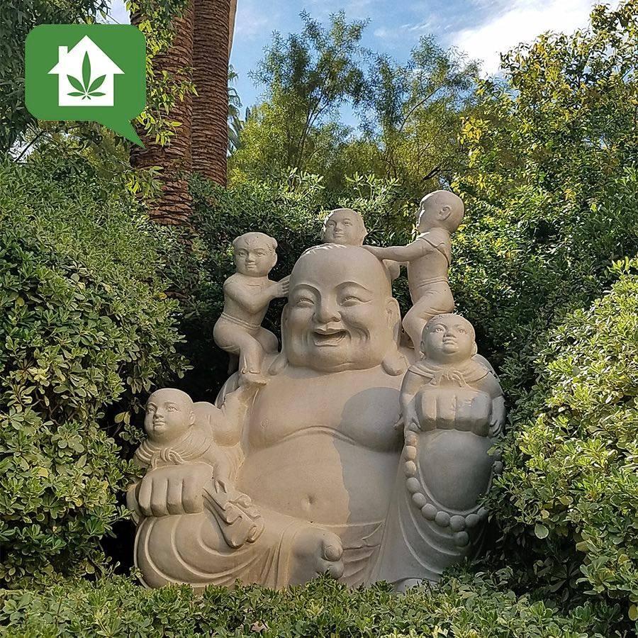 Weed Shops Budda