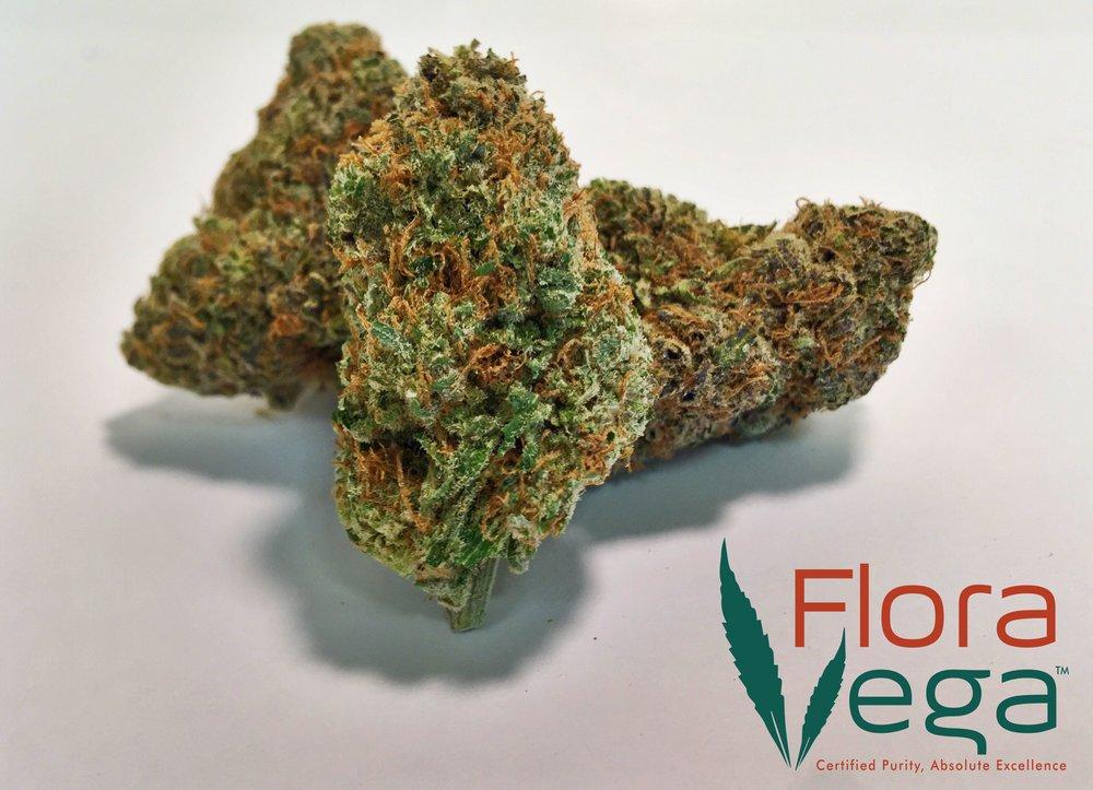 Flora Vega