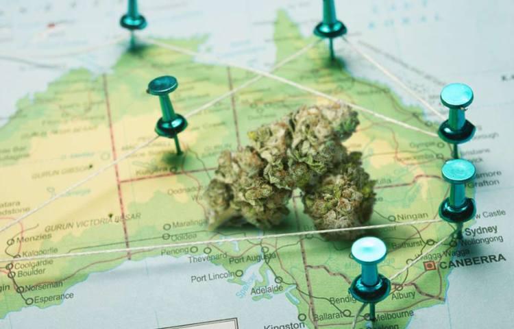 australia-marijuana-legalization