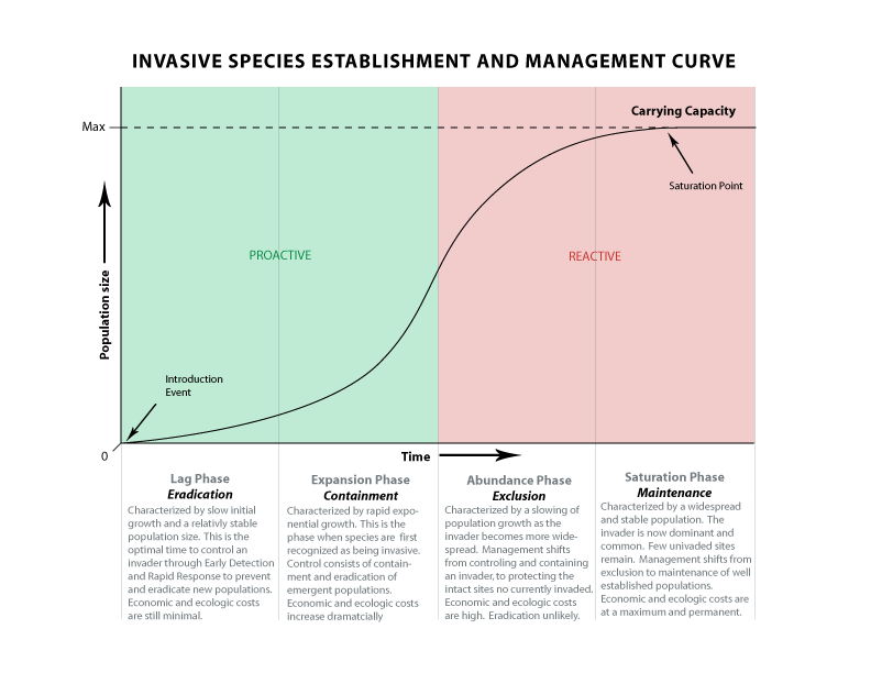 Invasive Species Establishment and Management Curve