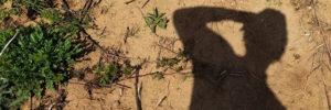 shadowslider