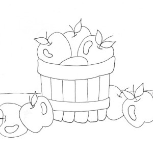 Bushel Of Apples Coloring Page Coloring Pages