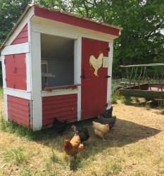 Wolfe's Neck Farm