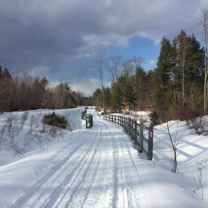mountain-division-trail-6