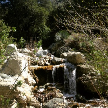 A beautiful waterfall with trash from picnickers