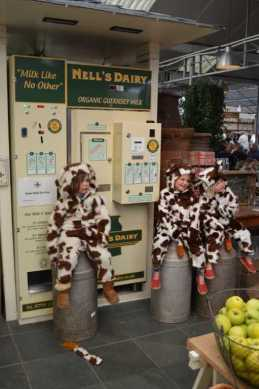 Nell's Dairy
