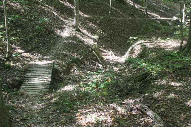 picture of another trail