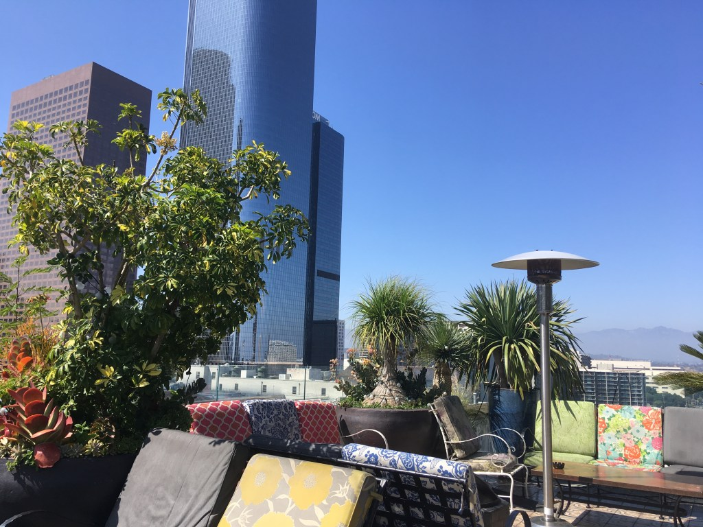 A restaurant rooftop in downtown L.A.: watch for White-throated Swifts (and weddings)
