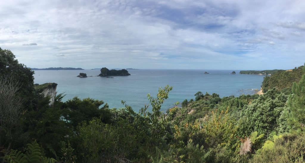 Looking east from high on the trail just south of Cathedral Cove