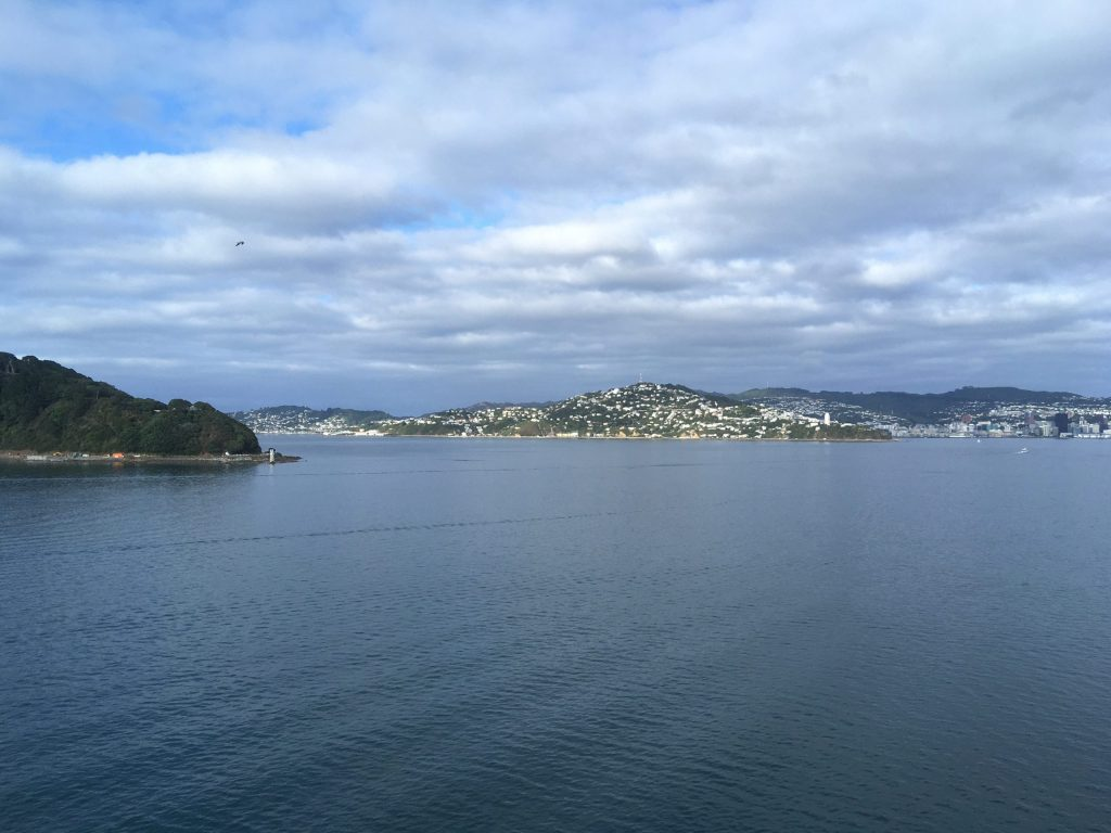 Looking back toward Wellington, with the harbour out of sight around the point on the right