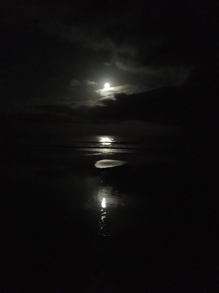 Moonlight glides up the beach