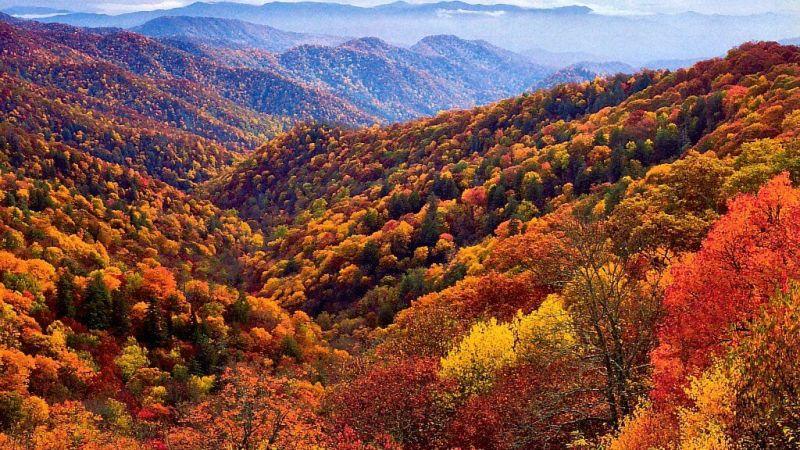 6 Fall Trips You Need To Take