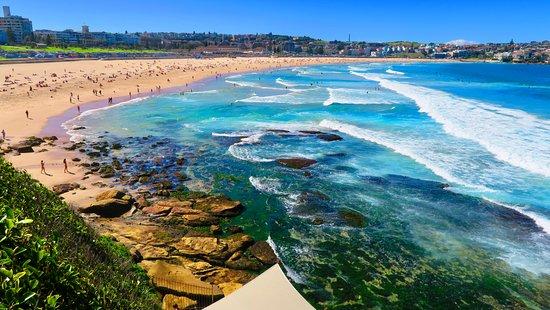 5 Best Things To Do In Sydney Australia