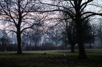 Rosy dawn over Saint Paul´s cemetery.