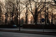 Sunrise above Sankt Paul´s cemetery.