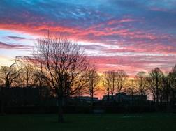 Fantastic sunrises!