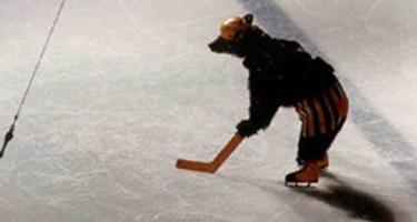 ice_skating_bear