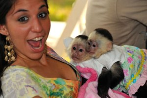 biebers_monkeyE