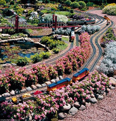 train_ladyB