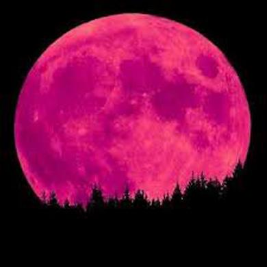 pink_planetC