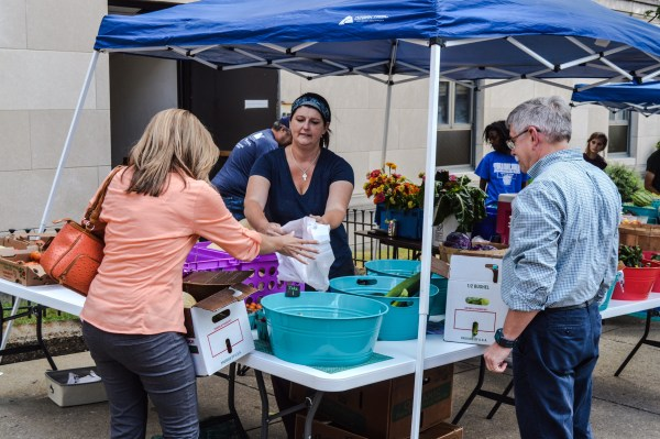 Grow Ohio Valley's Kate Marshall assists current subscribers of the organization's Community Supported Agriculture program.