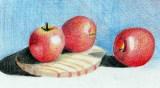 2014 - (ZRC) - 14 - Appels